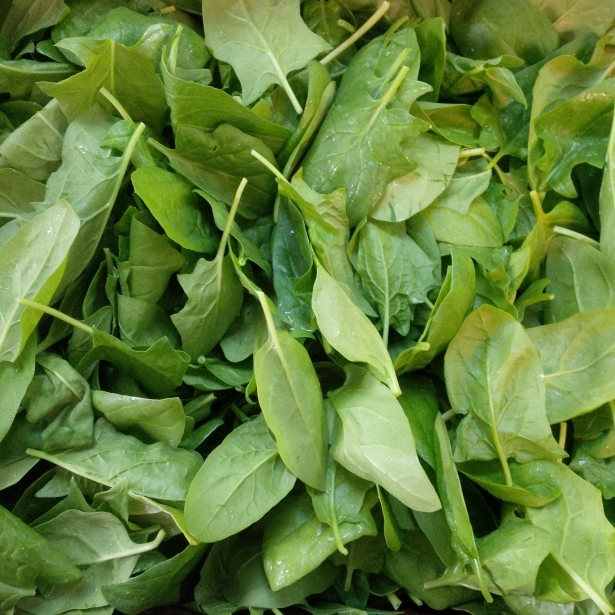 Local Spinach